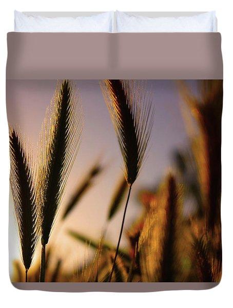 Wild Grasses At Sunset Duvet Cover