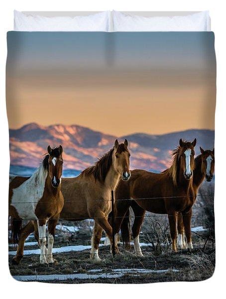 Wild Horse Group Duvet Cover