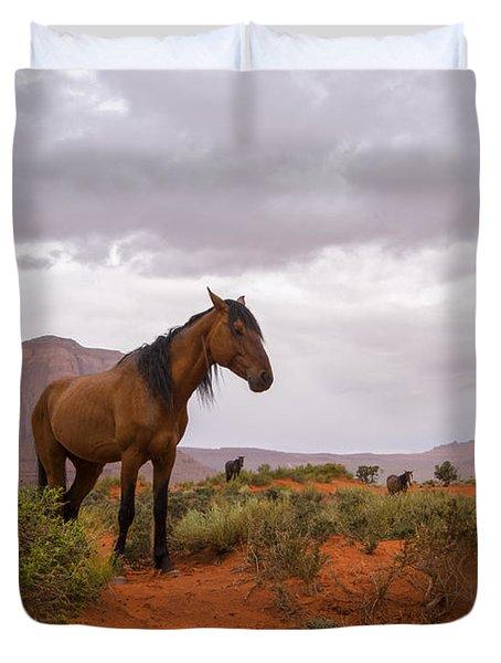 Wild Horses Of Monument Valley Duvet Cover