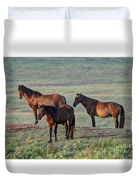 Wild Mustang At Teter Rock Duvet Cover by Jean Hutchison