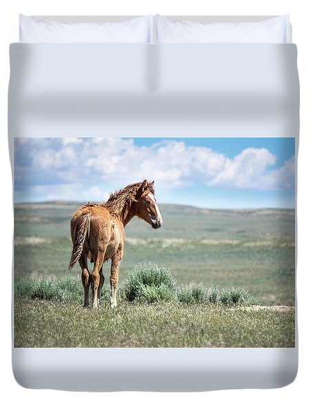 Duvet Cover featuring the photograph Wild Mustang Colt Of Sand Wash Basin by Nadja Rider