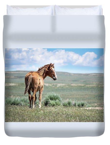 Wild Mustang Colt Of Sand Wash Basin Duvet Cover
