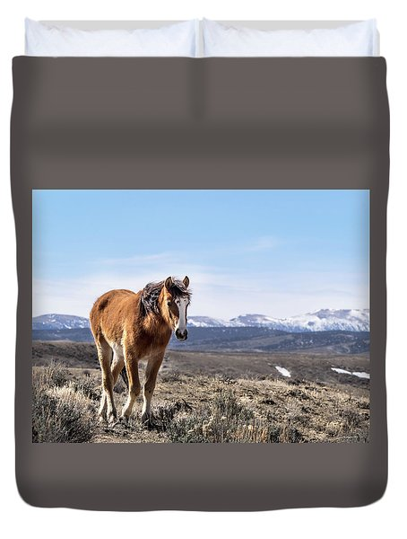 Duvet Cover featuring the photograph Wild Mustang Filly Of Sand Wash Basin by Nadja Rider