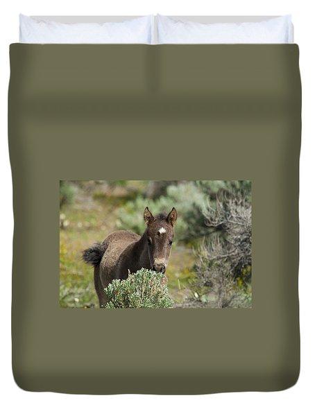 Wild Mustang Foal Duvet Cover