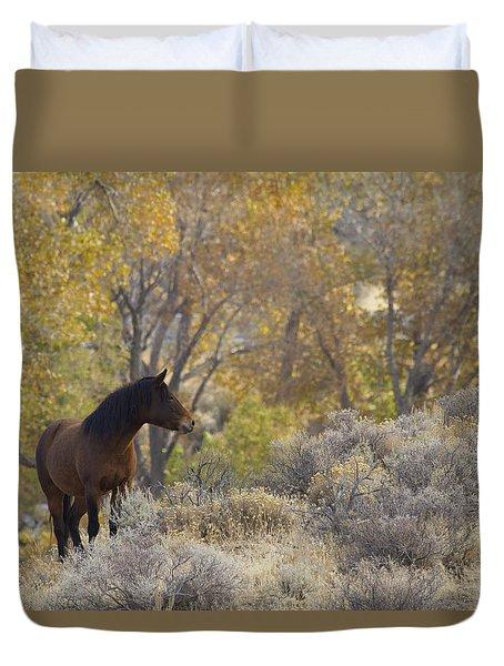 Wild Mustang Horse Duvet Cover