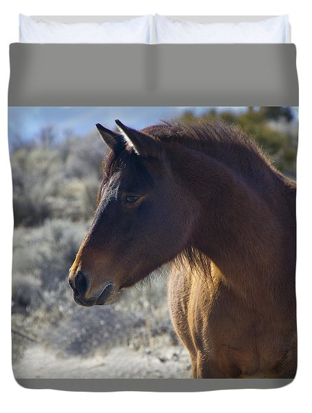 Wild Mustang Mare Duvet Cover