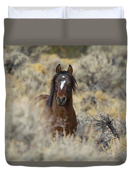 Wild Mustang Stallion Duvet Cover