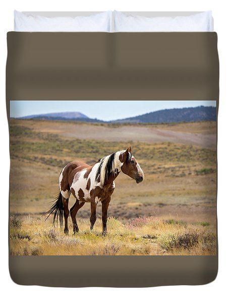 Duvet Cover featuring the photograph Wild Mustang Stallion Picasso Of Sand Wash Basin by Nadja Rider