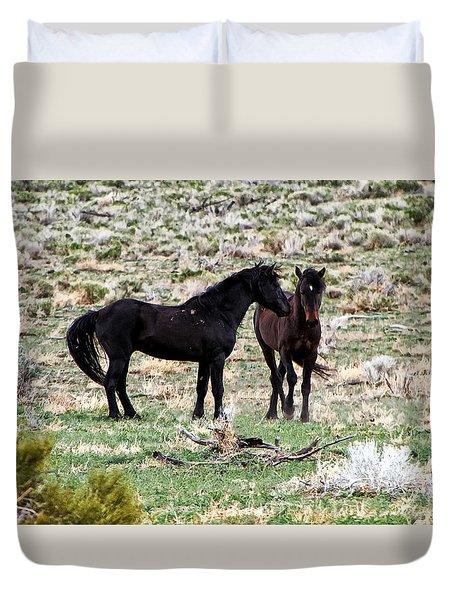 Wild Mustang Stallions Duvet Cover