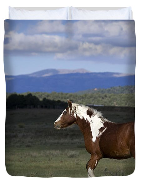 Wild Mustangs Of New Mexico 45 Duvet Cover