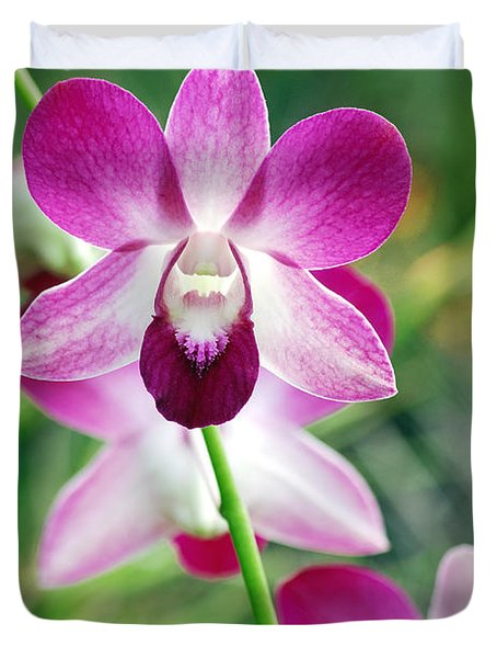Wild Orchids Duvet Cover by Michael Peychich