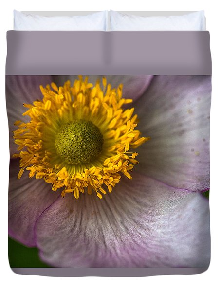 Wild Rose Duvet Cover by Elena E Giorgi