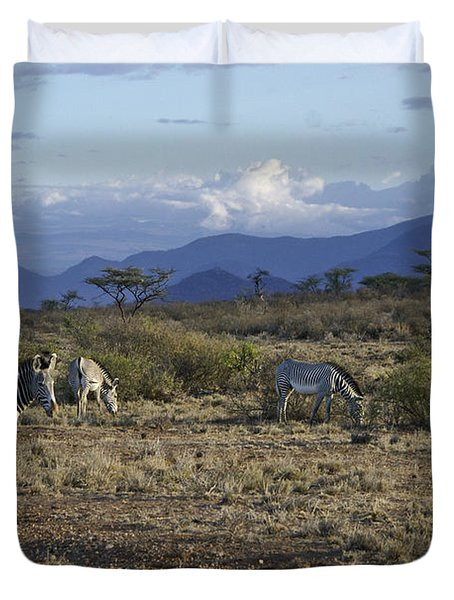Wild Samburu Duvet Cover by Michele Burgess