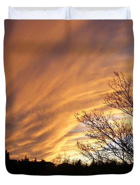 Wild Sky Of Autumn Duvet Cover by Barbara Griffin