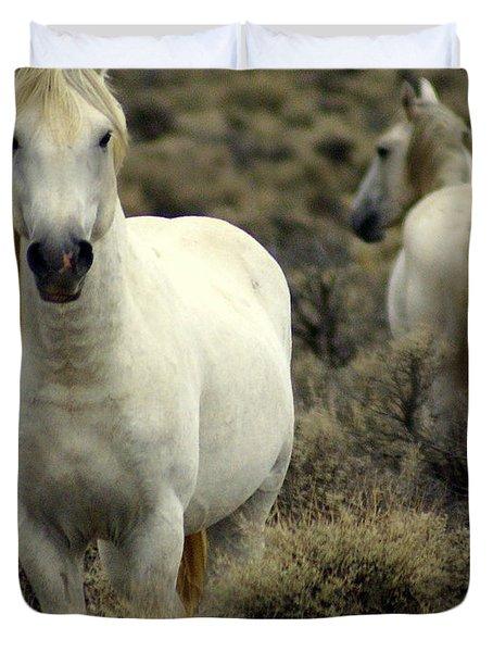 Wild Stallion Duvet Cover by Marty Koch