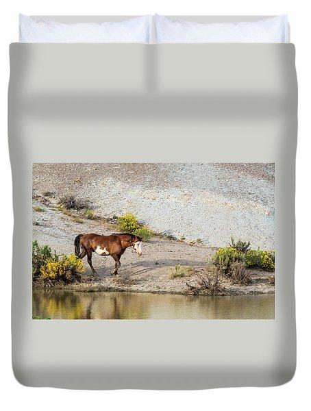 Wild Stallion Of Sand Wash Basin, Raindance Duvet Cover