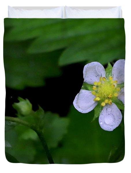 Wild Strawberry Blossom And Raindriops Duvet Cover