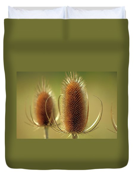 Duvet Cover featuring the photograph Wild Teasel by Bruce Patrick Smith