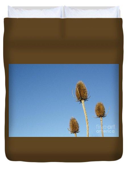 Duvet Cover featuring the photograph Wild Teasels Closeup by Kennerth and Birgitta Kullman