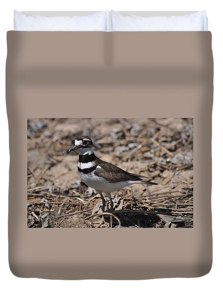 Wildbird Killdeer Mother Duvet Cover