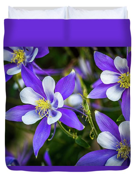 Wildflowers Blue Columbines Duvet Cover
