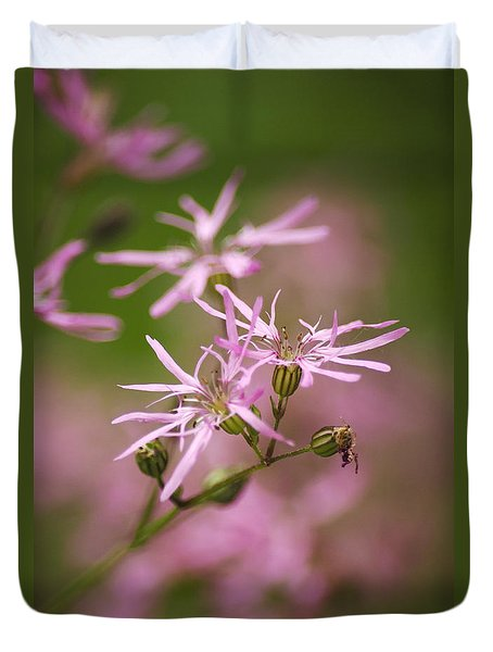Wildflowers - Ragged Robin Duvet Cover by Christina Rollo