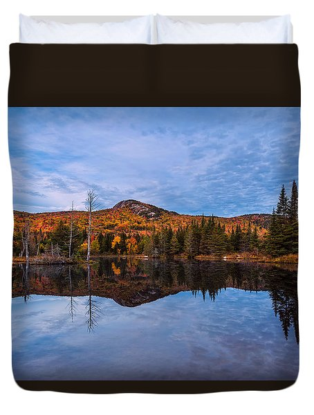Wildlife Pond Autumn Reflection Duvet Cover