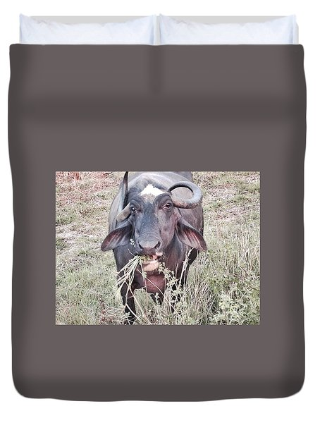 Wilds Of Buffalo Duvet Cover