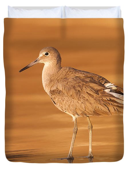 Willet Duvet Cover by Clarence Holmes