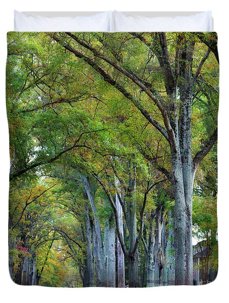 Willow Oak Trees Duvet Cover