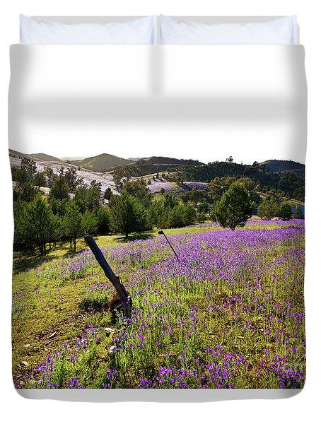 Duvet Cover featuring the photograph Willow Springs Station by Bill Robinson