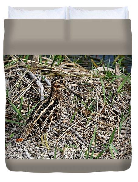 Wilson's Snipe Duvet Cover