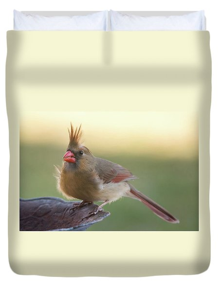Duvet Cover featuring the photograph Wind Blown Cardinal  by Terry DeLuco