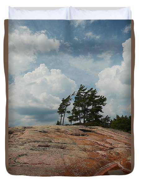 Wind Swept Trees On Rocks Duvet Cover