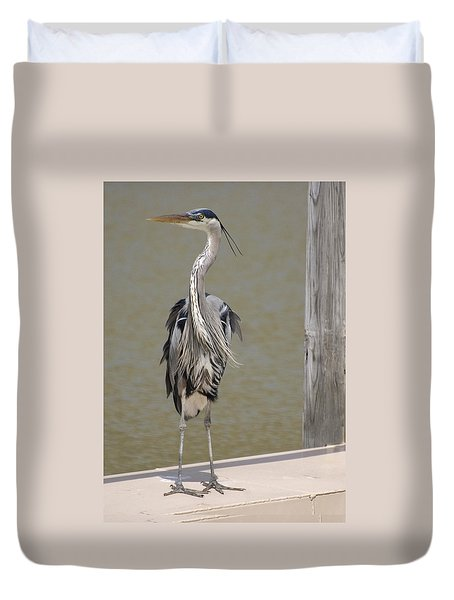 Duvet Cover featuring the photograph Windblown Heron by Kathleen Stephens