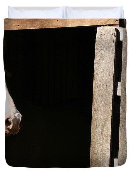 Window Duvet Cover by Angela Rath