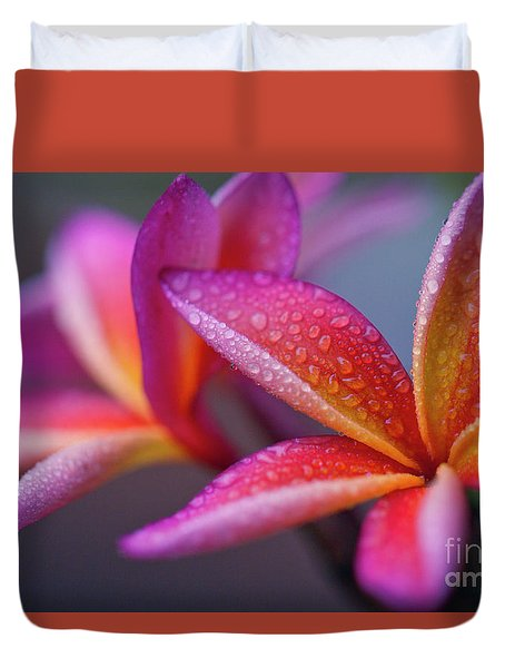 Duvet Cover featuring the photograph Windows Into Nature by Sharon Mau