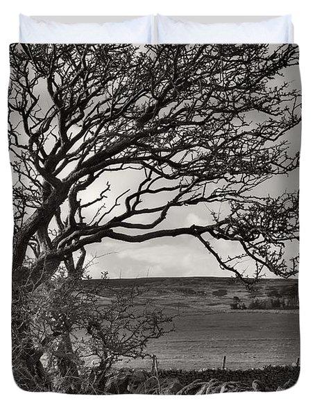 Windswept Tree In Winter Duvet Cover