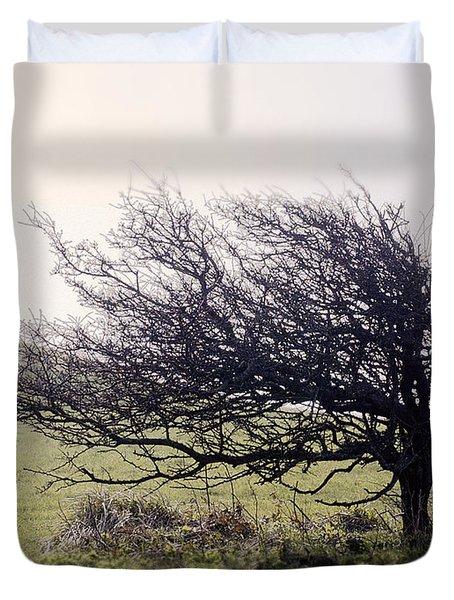 Windswept Tree Duvet Cover