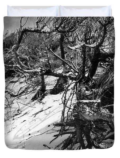 Windswept Trees  Duvet Cover