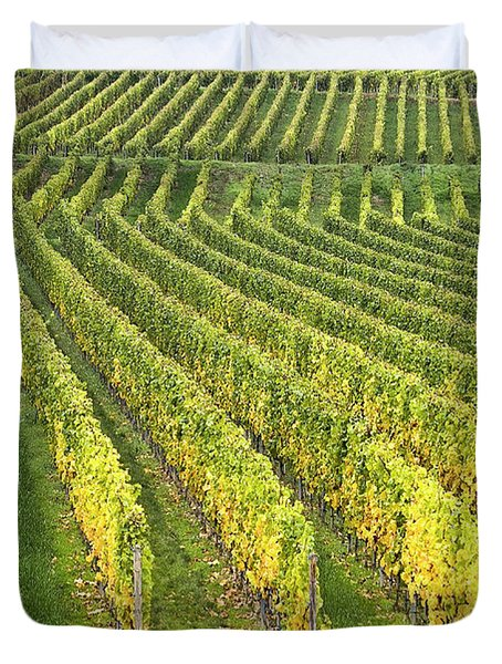Wine Growing Duvet Cover by Heiko Koehrer-Wagner