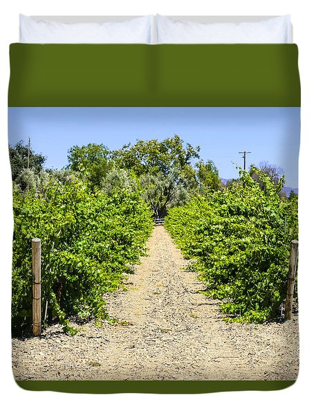 Wine On The Vine Duvet Cover by Chris Smith