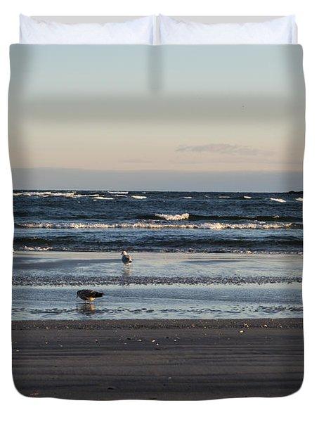 Wingaersheek Beach Seagulls At Sunrise Duvet Cover