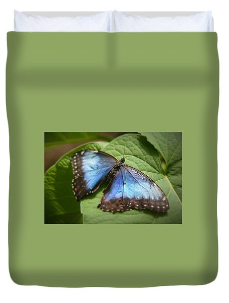 Wingdrops Duvet Cover by David S Reynolds