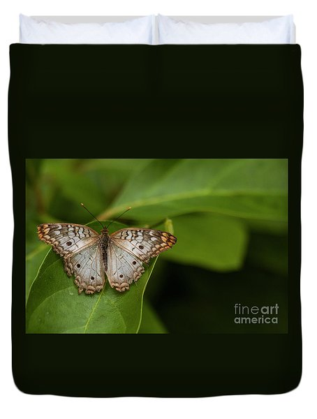 Wings Of A White Peacock Butterfly  Duvet Cover