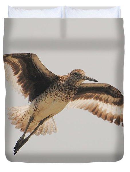 Wings Of A Willett  Duvet Cover
