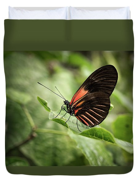 Wings Of The Tropics Butterfly Duvet Cover