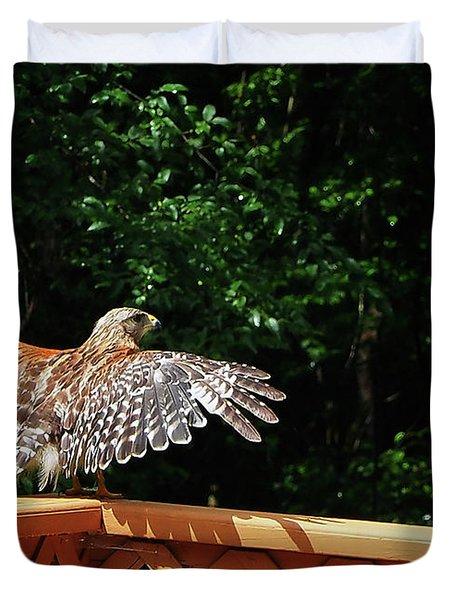 Wingspan Of Hawk Duvet Cover