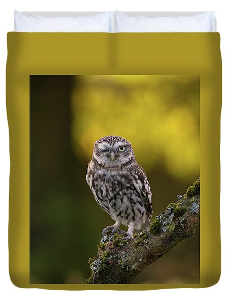Winking Little Owl Duvet Cover