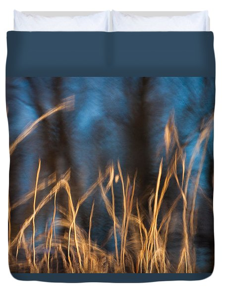 Duvet Cover featuring the photograph Winter Afternoon Impressions  by Davorin Mance